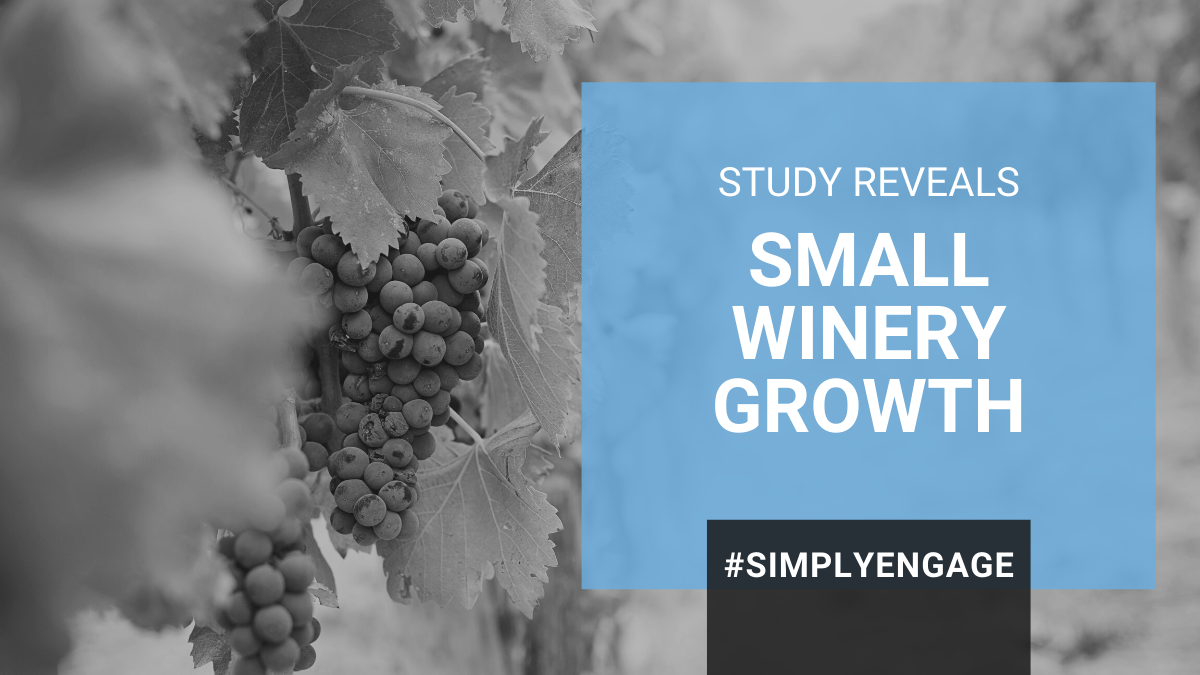 Blog - Small Winery Growth - How Even the Smallest Can Compete and Be Profitable