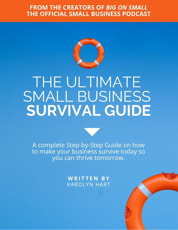 Download the FREE Ultimate Small Business Survival Guide. Transforming your business to survive now so you can thrive later! Part of InspireHUB's Digital Rescue Kit program to help small business owners navigate the challenges during this difficult time.