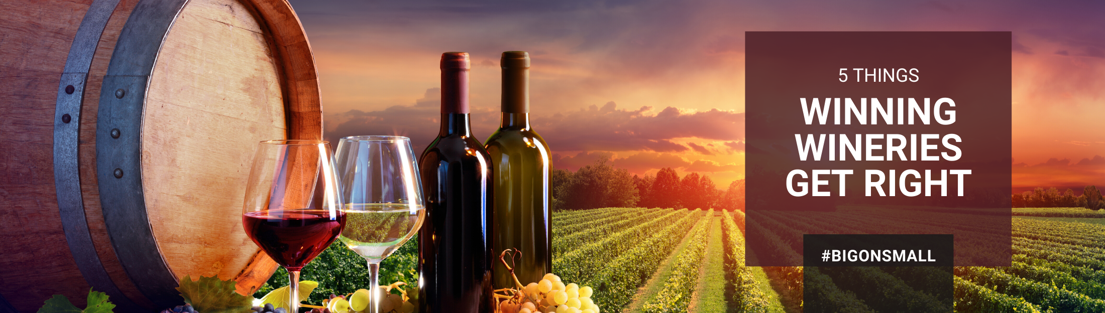 5  Things Winning Wineries Get Right