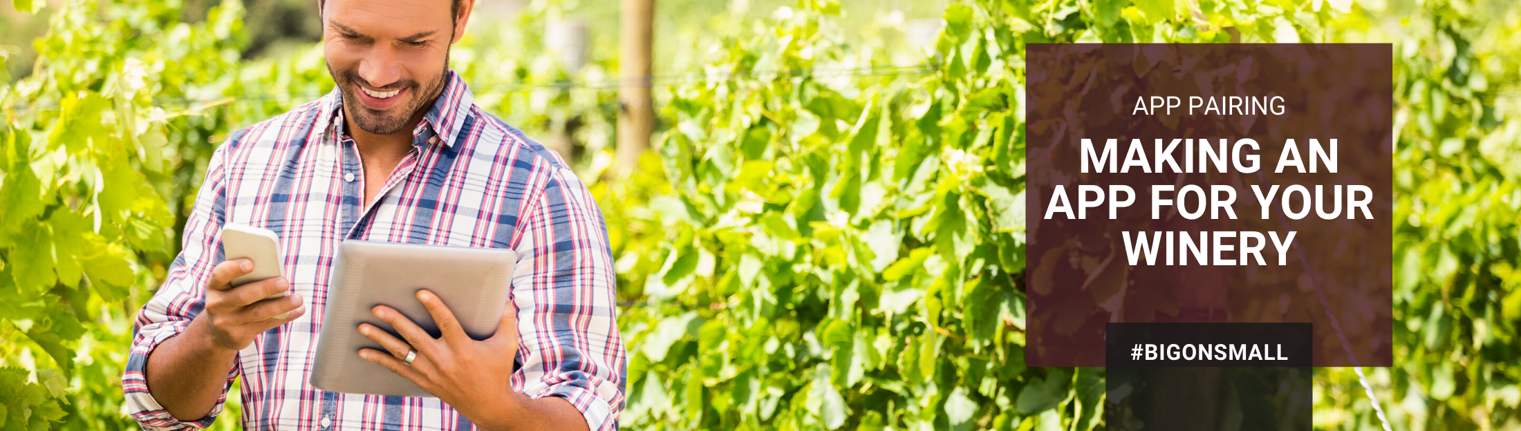 Dreaming of an app for your winery?